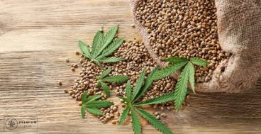 why-are-hemp-seeds-good-for-you